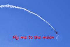 fly-moon1